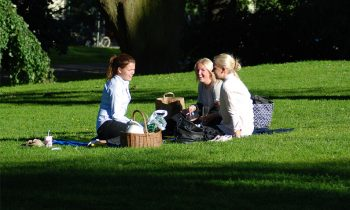 Have a picnic in Stockholm's beautiful parks