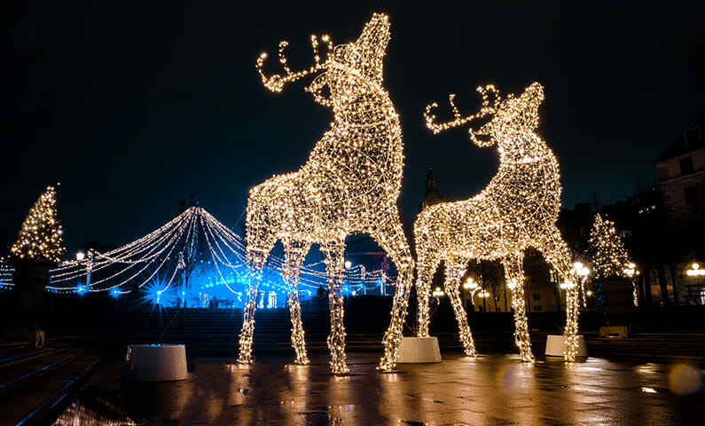 Stockholmsjul Christmas lights