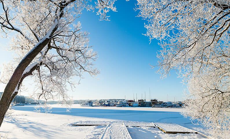 Stockholm winter parks
