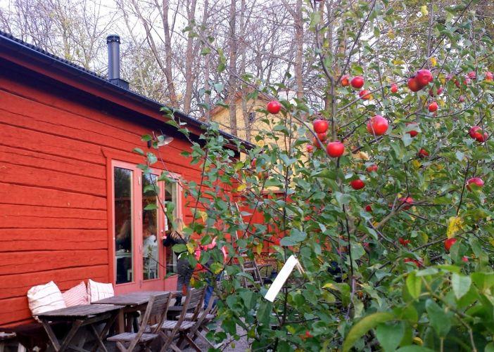 An afternoon at Äppelfabriken on Faringsö