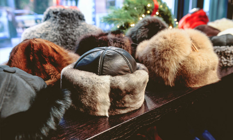 Kiwi Furs clothing