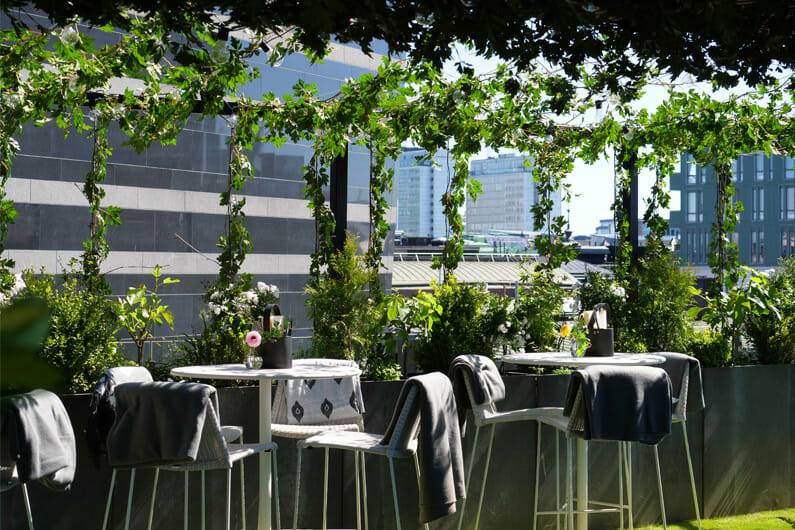 Clarion Hotel Sign launches Stockholm's greenest Rooftop Garden Bar