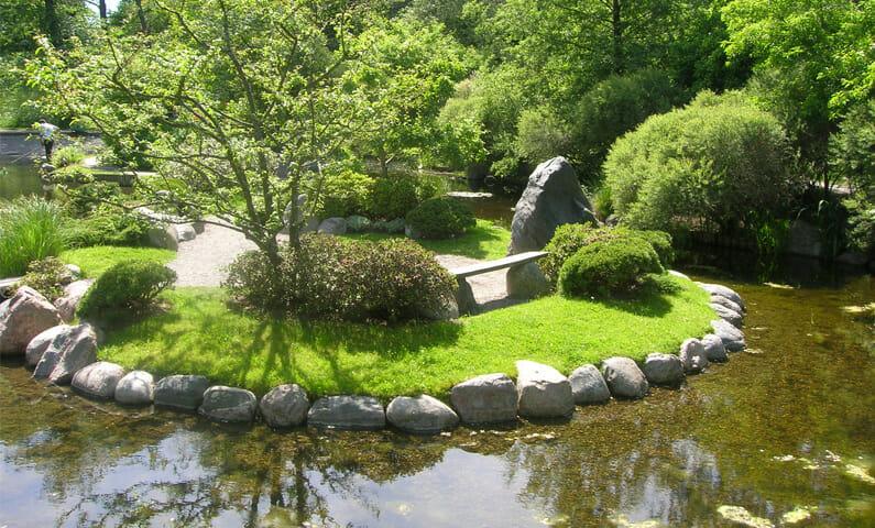 Den japanska dammen i Bergianska trädgården