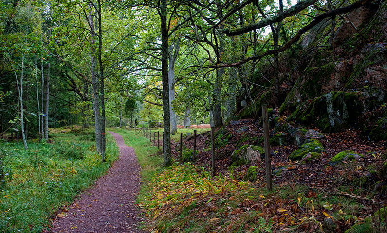Sörmlandsleden hiking trail