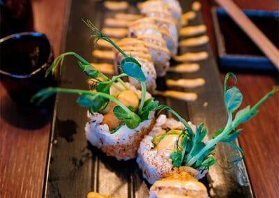 Vanadis Sushi 12