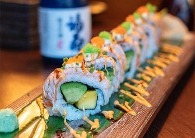 Vanadis Sushi 5